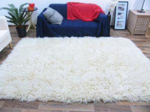 Langflor Teppich reinigen