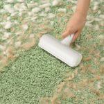 Tierhaare und Gerüche aus dem Teppich entfernen